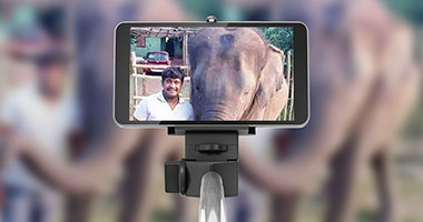Elephant kills youth after he jumps into animal enclosure to take selfie at Bannerghatta zoo