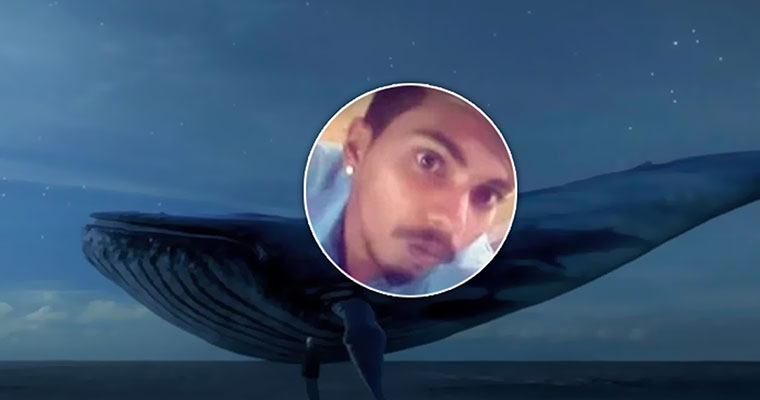 Government asks Google, FB, MS, others to remove Blue Whale links