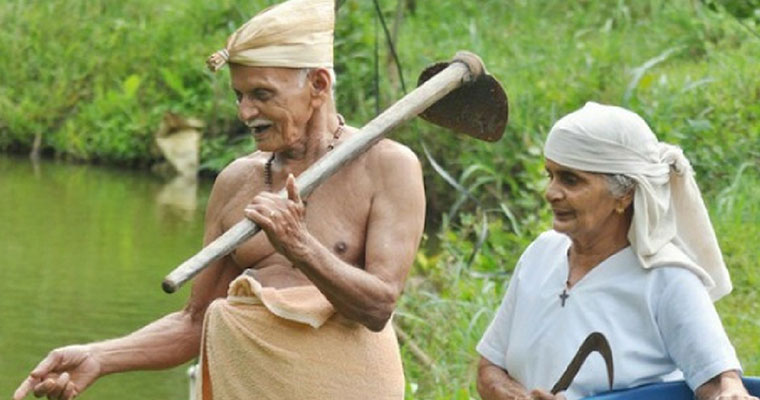Good news for Kerala farmer: crop damage insurance hiked by six times