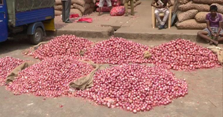 Short supply of Onion causes price rise - Rs 50 per kg