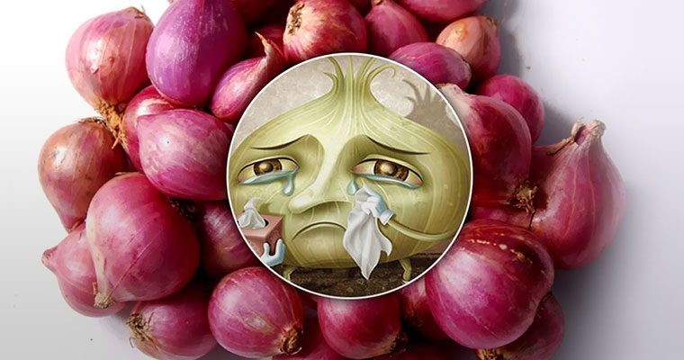 Onions making Kerala cry: Shallot price shoots up to a record Rs 100 per kg